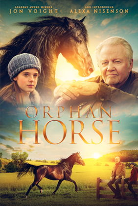 Orphan_Horse